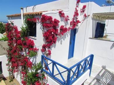 Papadakis Apartments