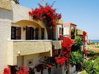 Malia Studios Malia Creta