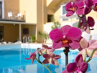 La Stella Apartments And Suite Creta