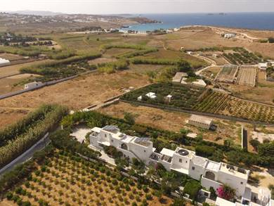 Marili Apartments Studios Paros