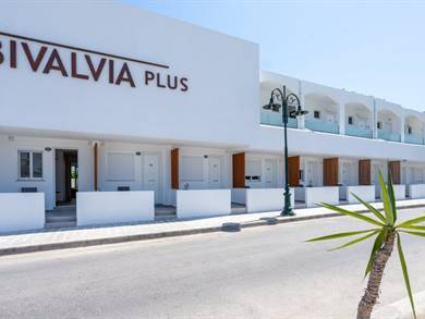 Bivalvia Beach Plus